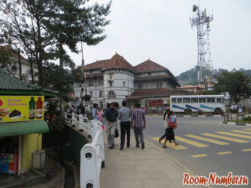 Канди, Шри-Ланка: самостоятельно едем в город мечтателей и летающих собак