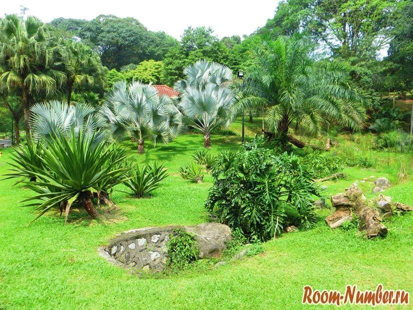 Perdana Botanical Garden kuala lumpur