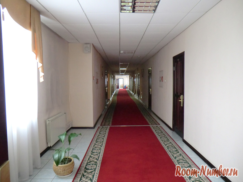 Отель Светлана коридор