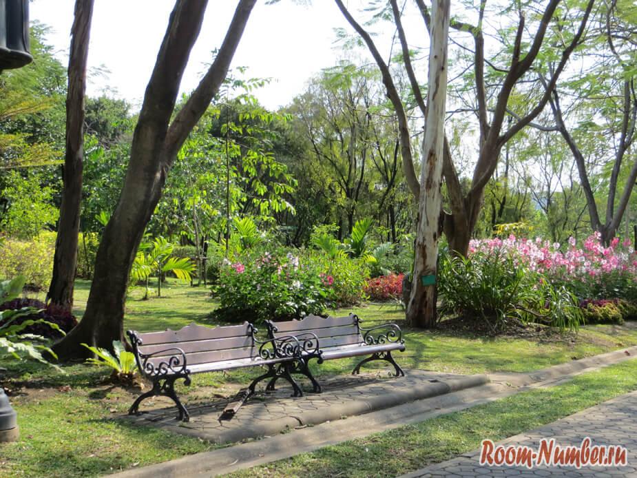 Park-Chatuchak-5