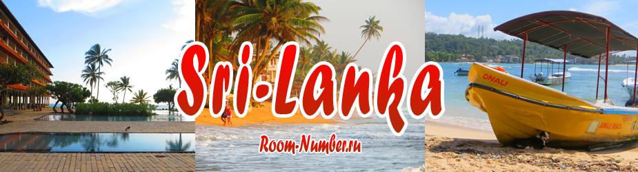 Читайте в данном разделе, где и как снять дом или комнату в Шри Ланке