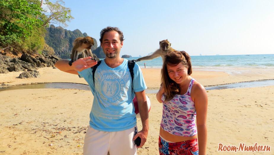 мы с обезьянками