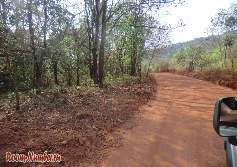 Водопад Дудхсагар в Гоа и пыльная дорога через джунгли