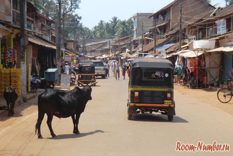 Корова на улице в Индии