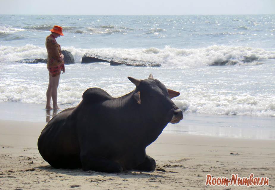 Пляж Вагатор бич