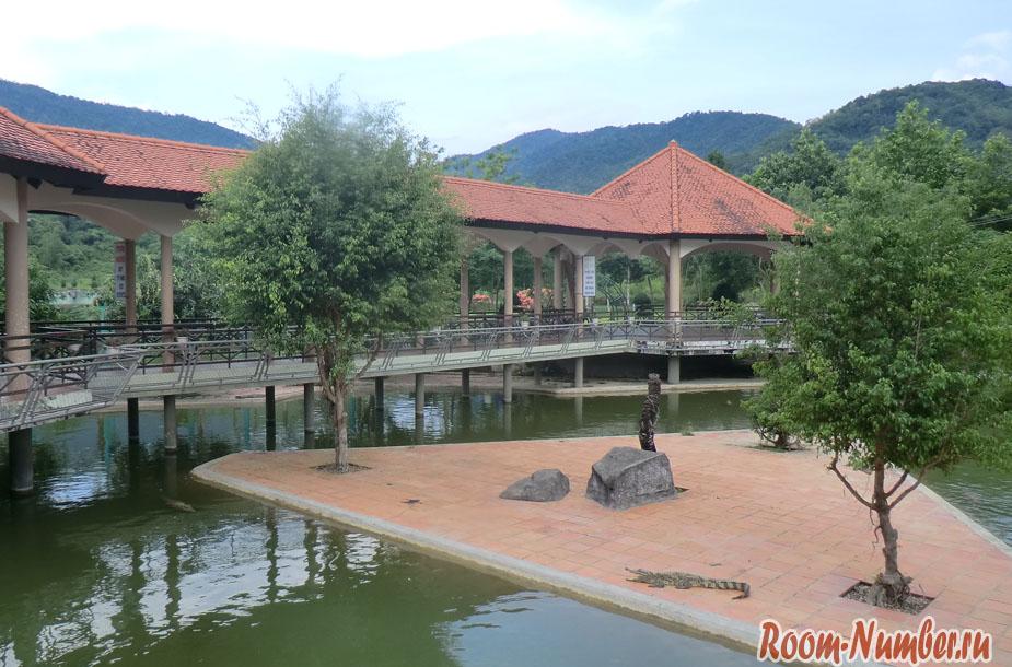 krokodilova-ferma-vo-vietname-7
