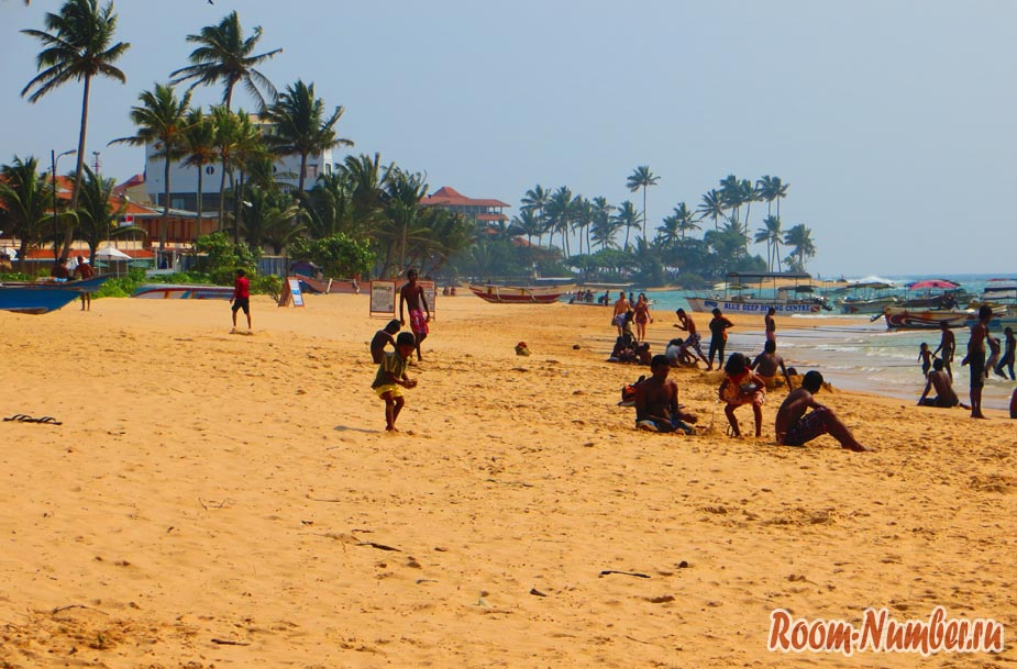 Насколько реально и безопасно поехать самостоятельно в Шри-Ланку?