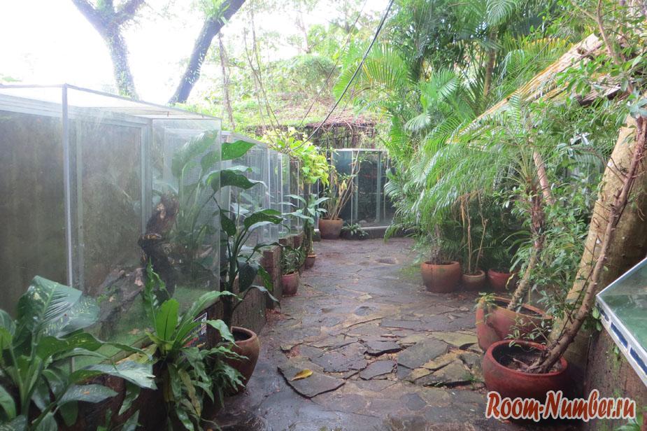 Ресторан и зоопарк в Сиануквиле