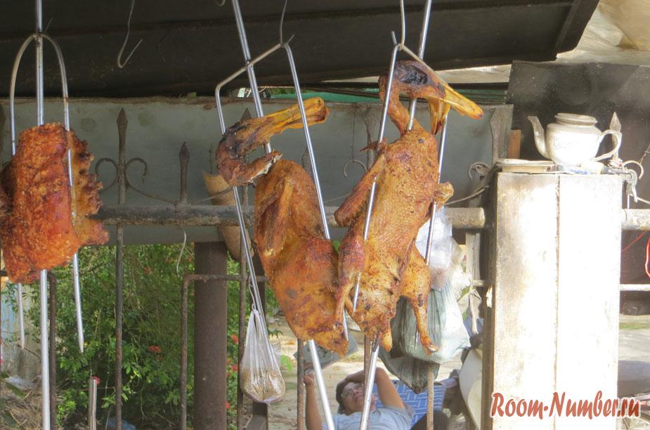 net-lybvi-k-vietnamy-1