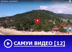 banner samui video