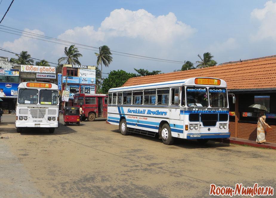 Автобус Шри Ланка