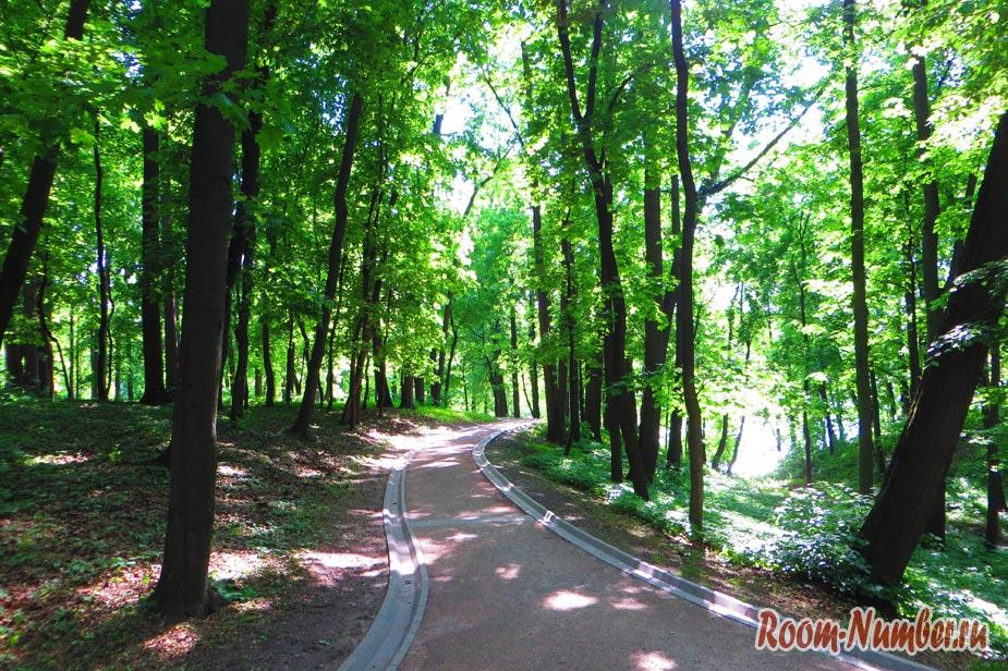 samyi-lychhiy-park-v-moskve-sharishino-18