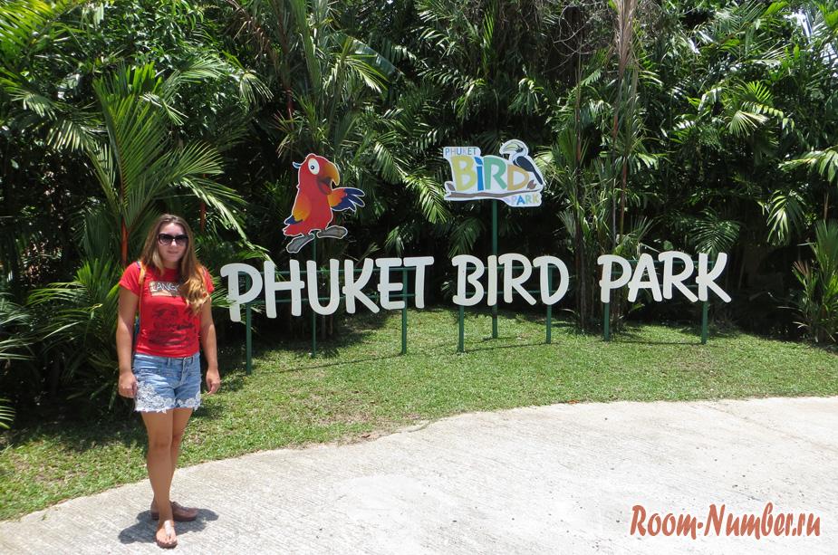 Парк Птиц на Пхукете. Удивительная возможность прикоснуться к миру птиц