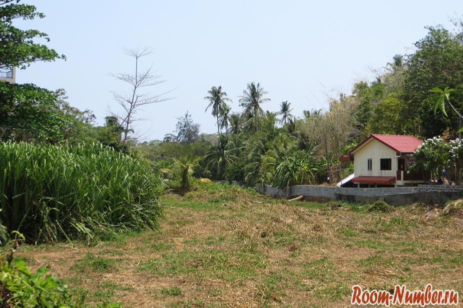 kuda-poehat-na-phuket-32