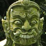 madic-garden-na-samui-14