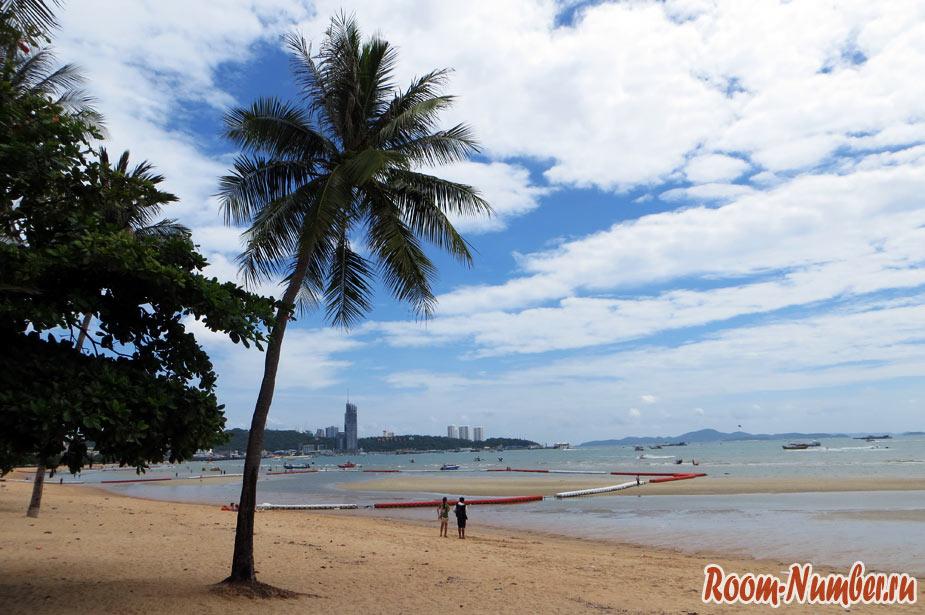 пальмы на центральном пляже паттайи