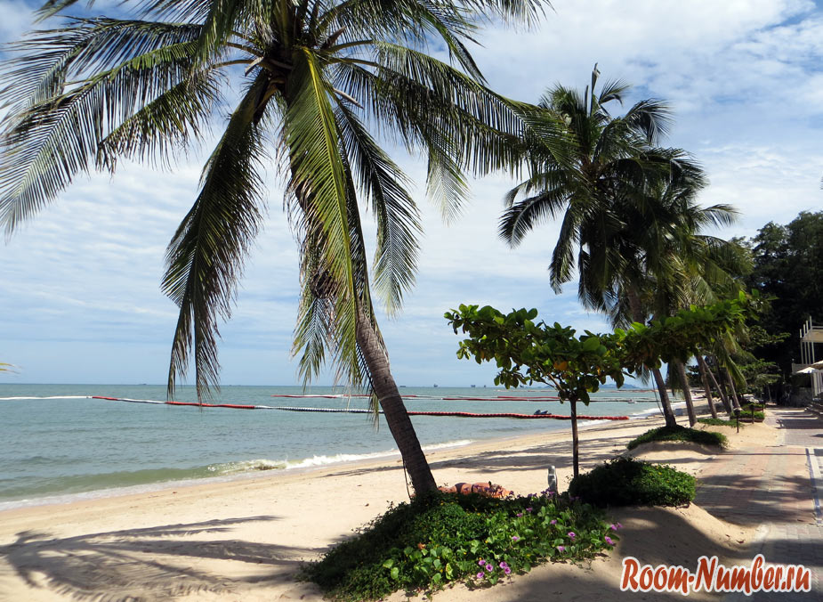 wongamat pattaya photo