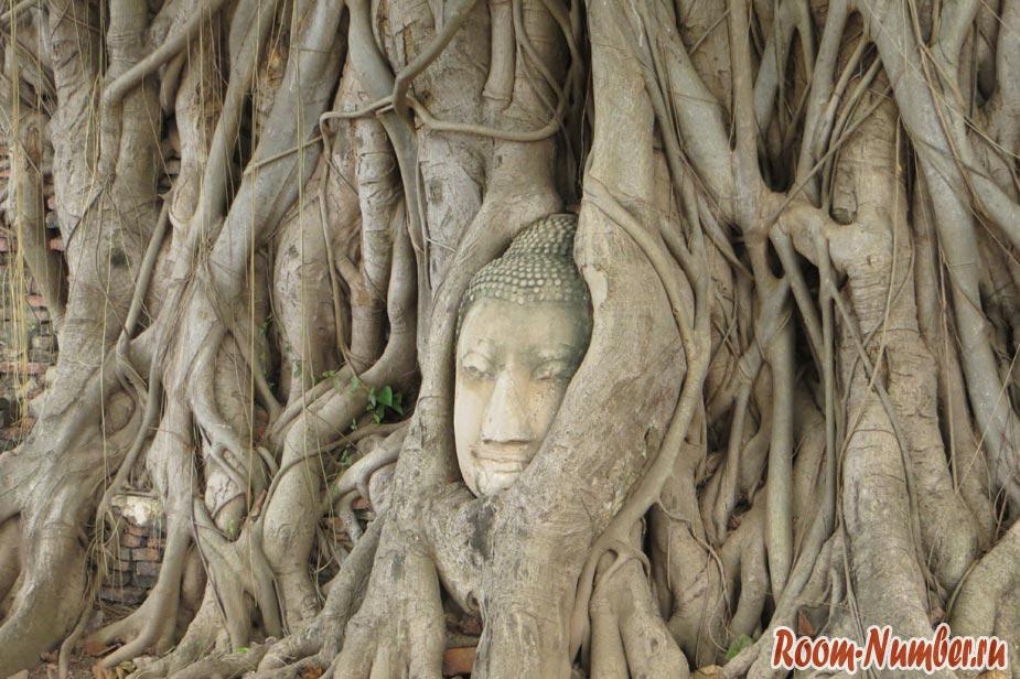 голова будды в Аюттайе, вросшая в дерево находится в храме Ват Махатхат