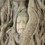 ayutthaya-150
