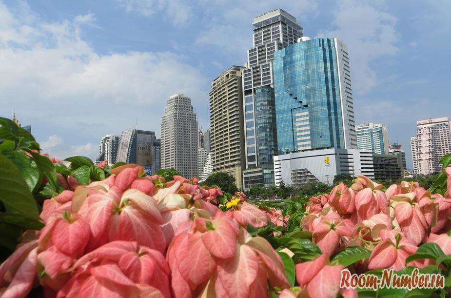 Парк Benjakitti в Бангкоке. Панорамный вид на небоскребы