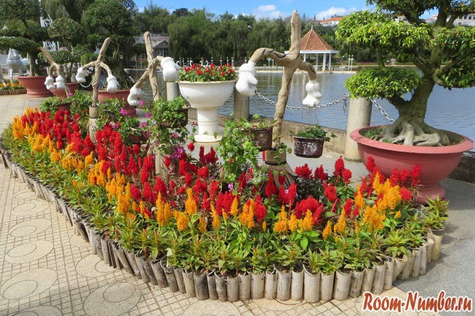 cvetochnye-sady-v-dalate-06