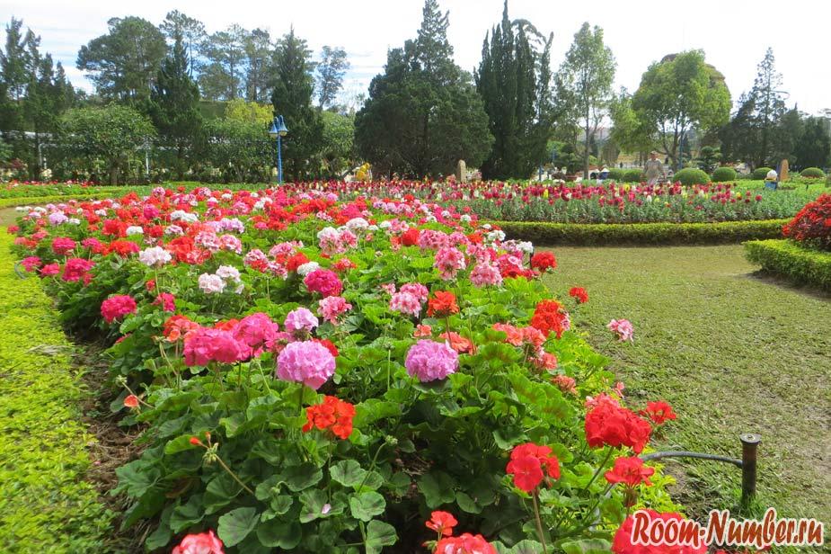 cvetochnye-sady-v-dalate-09
