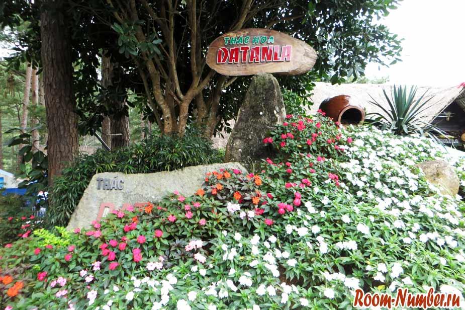 цветы возле водопада датанла