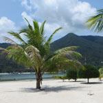 plazh-malibu-na-pangane-16