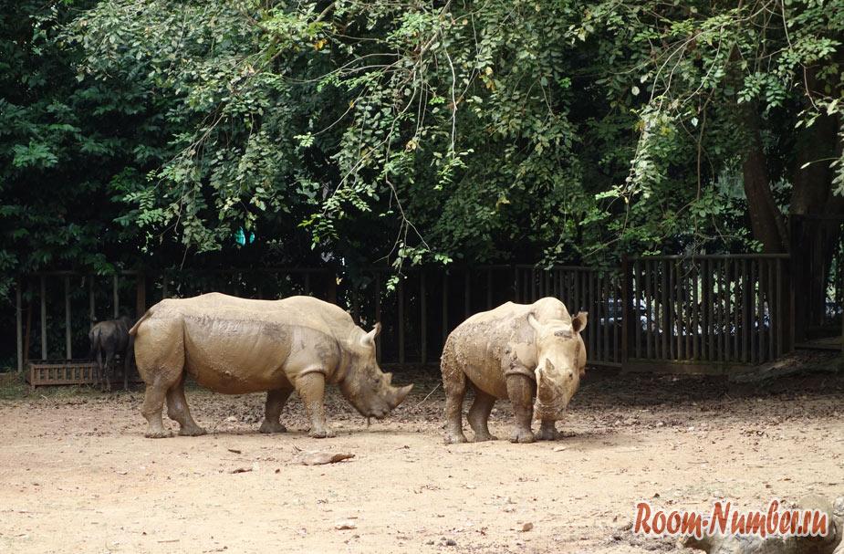 zoopark-v-melakke-9