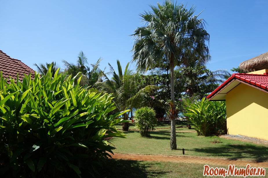 palm-beach-ko-mak-6