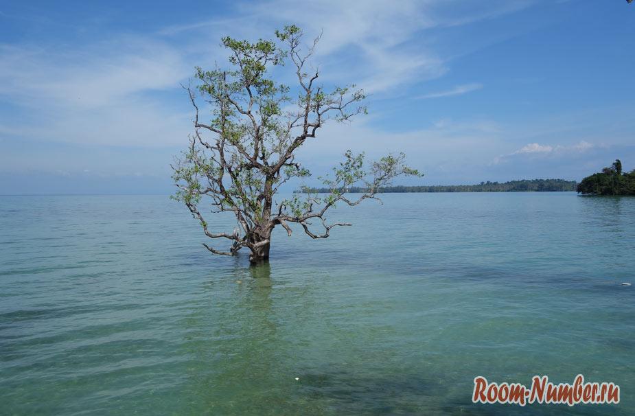 Пляж Циннамон на Ко Маке. Психоделическое место, не похожее ни на что