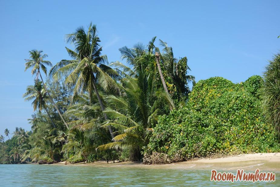 Живописный пляж возле отеля Palm Beach на Ко Маке с нависающими деревьями