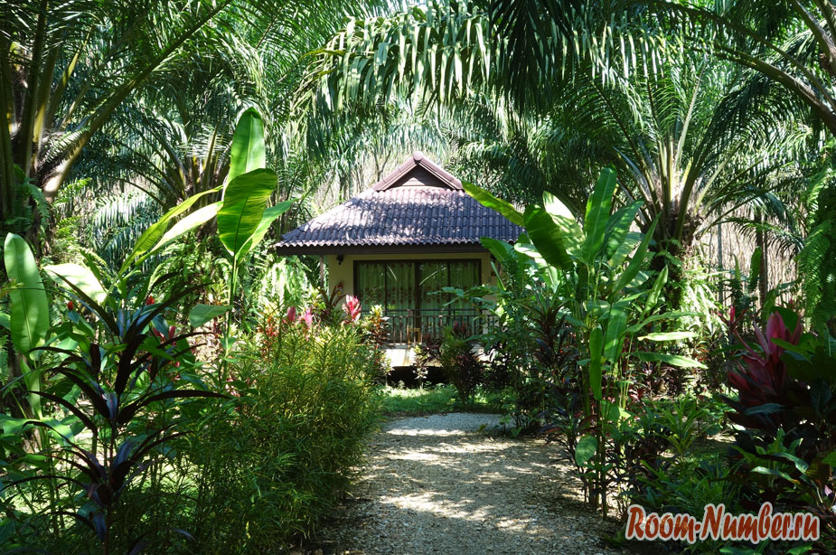 orel-v-khao-soke-palm-garden-resort-7