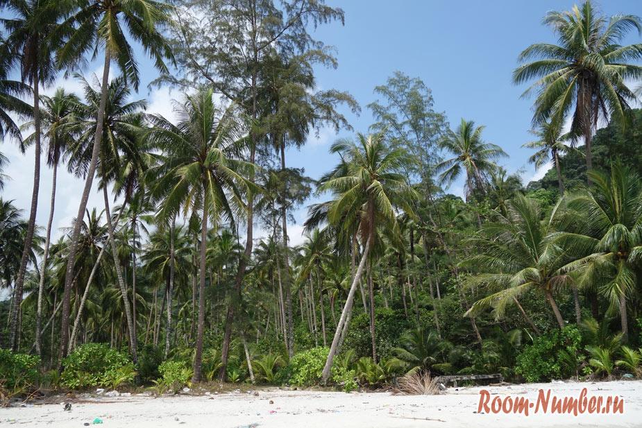 plazh-neverlend-na-ko-koode-11