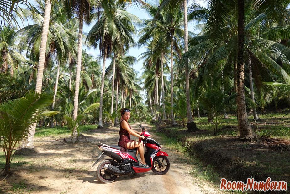 ko-kood-bike-7