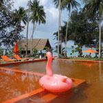 otel-ko-kood-paradise-beach-38