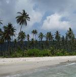 plazh-ao-prao-nko-koode-10