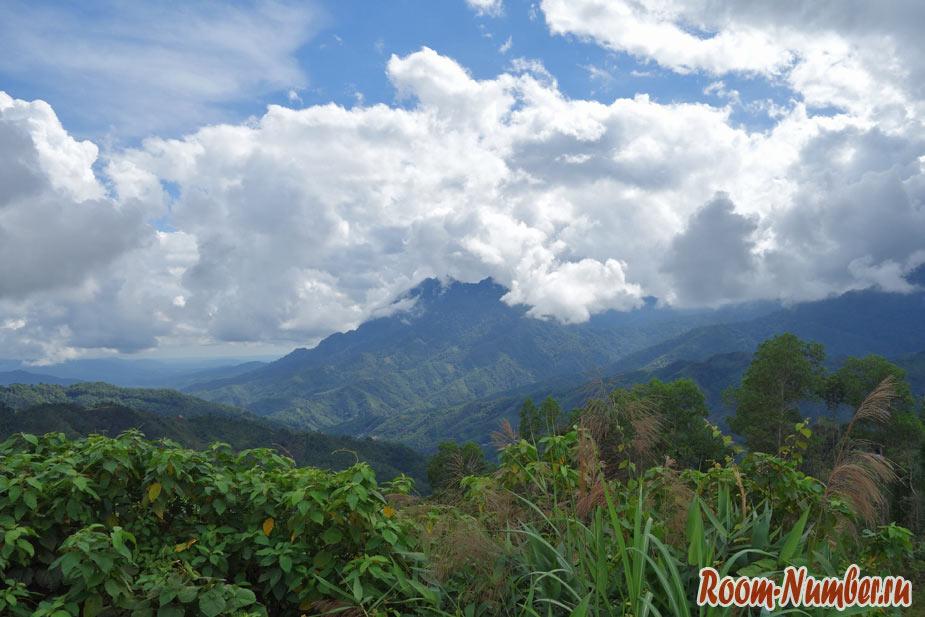 Национальный парк Кинабалу на Борнео. Горы, дождевые леса и раффлезия