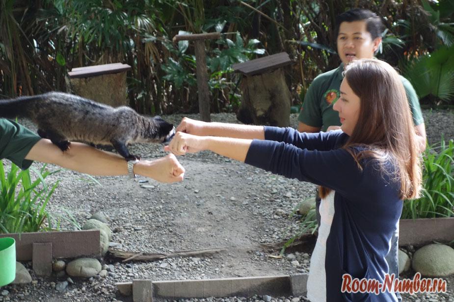 zoopark-lok-kawi-v-kota-kinabalu-12