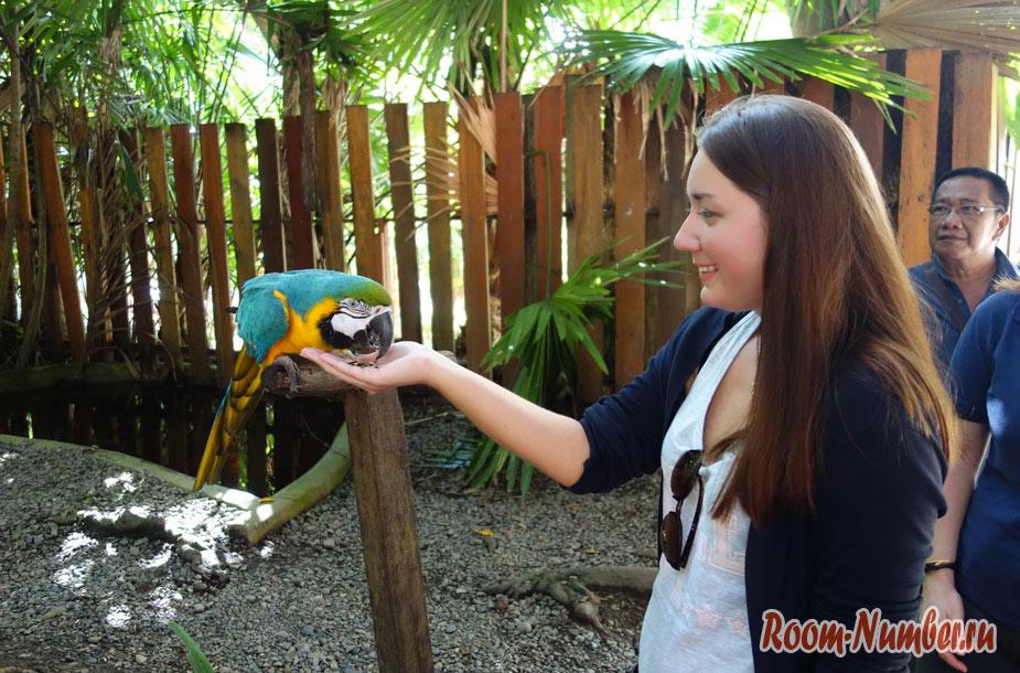 zoopark-lok-kawi-v-kota-kinabalu-16