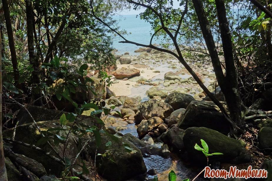 Permai-Rainforest-13