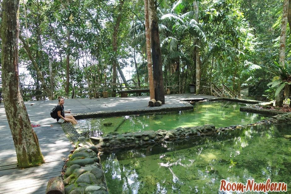 Permai-Rainforest-7