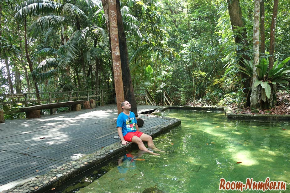 Permai-Rainforest-8