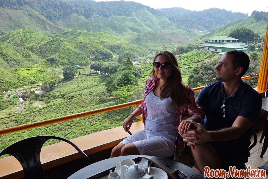 cameron-highlands-6