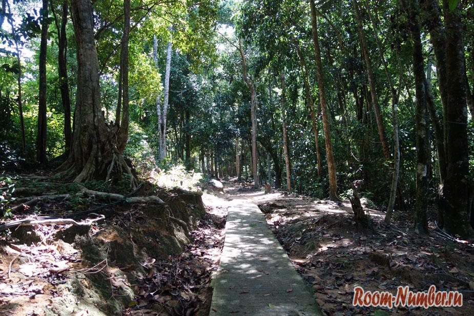 ostrov-lang-tengah-v-malaysii-23