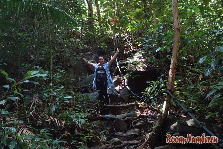 Джунгли Борнео. Восхождение на гору Santubong
