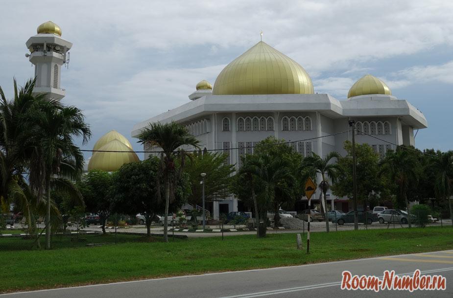 dolgo-chivech-v-malaysii-7