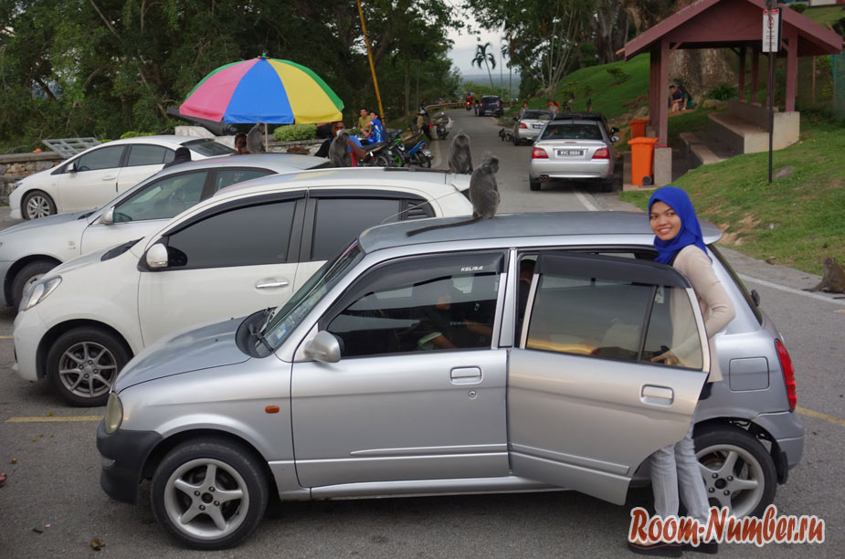 minys-v-malayzii-13