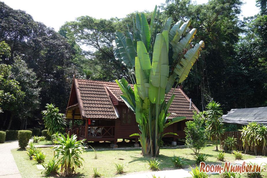 Отель Mutiara Taman Negara Resort в национальном парке Таман Негара в Малайзии