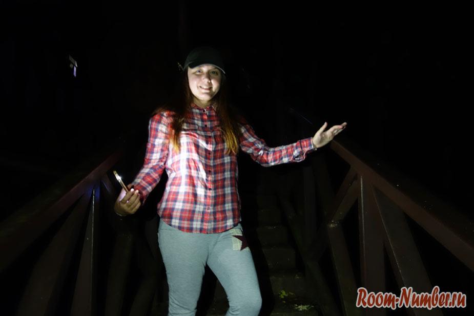 Ночная экскурсия в Таман Негара. Кого можно увидеть ночью в лесу